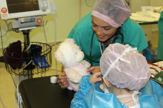 Image of our Teddy Bear Hospital